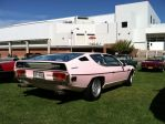 Pink Espada on Long Island by arozzi