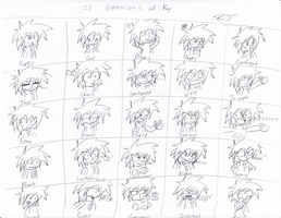 25 Expressions of Kay by keijikun
