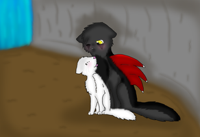 Snowpaw and Shadow by breebree223