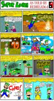 """Excerpts from """"Super Luigi"""" by Redhead64"""