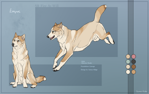 SR Siberian Husky - Empire by Sumac-Ridge