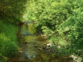 Babbling Brook by midnightstouchSTOCK