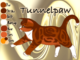 Tunnelpaw of WindClan - Trail of Ashes by Jayie-The-Hufflepuff