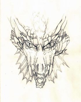 Dragon's face sketch by Bahamut2
