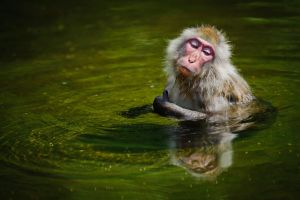 Relaxing bath by HenrikHolmberg