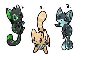 Kitty Auction 01 :CLOSED: by Swift-The-KittyAdopt