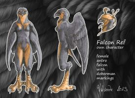Falcon Ref by luthien368