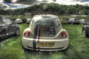 The Love Bug by snapshot19