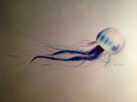 Jellyfish by SamLindner