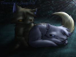 Thornclaw x Snowcloud by TheDogzLife