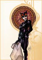 Catwoman.Colors by mijka