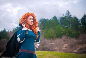 Merida - The Brave by TsubameRain