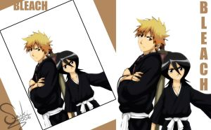 BLEACH Poor Photo... by doaseiki