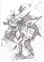 Catwoman and Batman Unfinished by robsonrocha