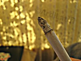 CIGARETTE by ArdiLatifi