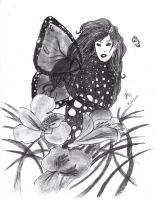 One of the butterflies by comtessedesang
