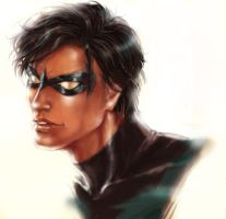 NIGHTWING REPAINTED by NISSHIE