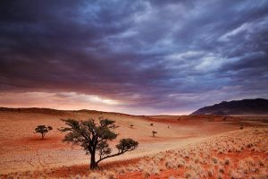 Chrome Skies by hougaard