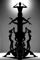 BW Totem by Carnisch