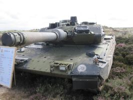 Tank Leopard 2 A5 1 of 4 by Liam2010