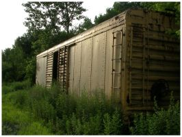 abandoned train by shod