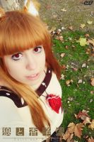 Cosplay Horo 39 by SaFHina