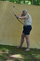 2015-06-10 Bow Poses 14 by skydancer-stock