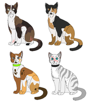 Warriors adoptables 1# (CLOSED) by blue-mist-sky