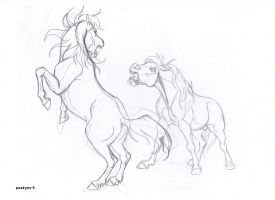 Two angry stallions sketch WIP by pookyhorse