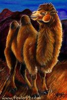 Bactrian Camel Card by Foxfeather248