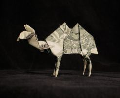 dollar bill camel by Cissell