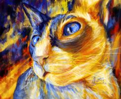 ''Kitty's Blue Eyes'' by Tyliss