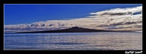 Rangitoto Island by carterr