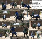 Knight Swordfight Stock Pack 1 by tursiart