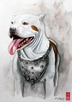 Pit Bull Watercolor by rchaem