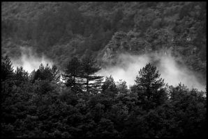 Cevennes Valley by organicvision