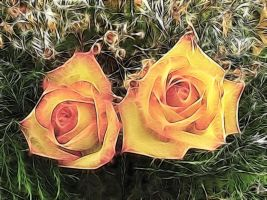 Roses for Margo by metamorphacilles