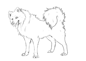 Lineart - japanese spitz by Frodse