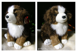 Ty Mugsy Australian Sheepdog by The-Toy-Chest
