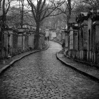 Snow on Pere Lachaise 7 by MadameOreille