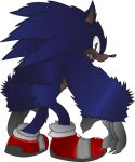 Werehog Sonic by MetalshadowN64