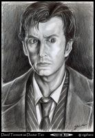 David Tennant: Doctor Ten by Norloth