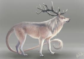 Darial. Spirit of the forest by IntoTheBear