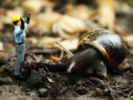 Snail Attack by Itti