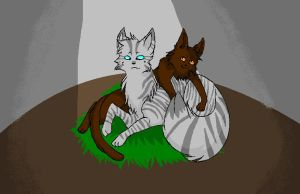 Jayfeather and Briarlight by Silvahsnoweh