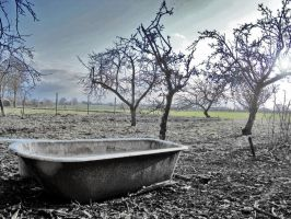 The Bathtub in the allotment by Hixybabes