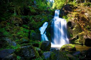 Triberg Falls III by Linkineos