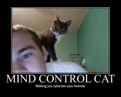 Control Cat by Cassius1000