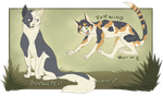 Doublepelt and Pinewind - miao miao by VanyCat