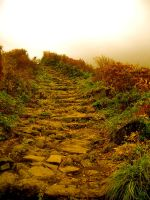 Road to Nowhere by RosaLui